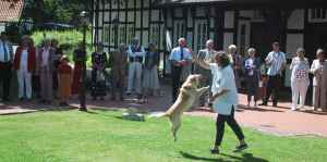 dogdancing in Melle